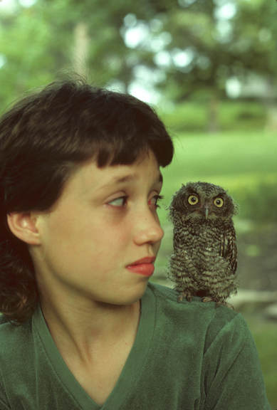 12-year-old girl with 2-week-old screech owl (Otus asio)